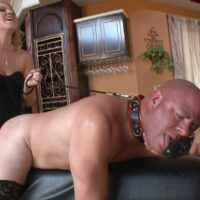 Stellar yellow-haired mistress Ashley Edmunds makes her male slave suck on her strap-on penis