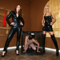 Killer nymphs Zoey and Kendra tease a slave's firm cock before putting him in a box