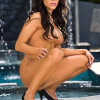 Brunette MILF porno star Aleksa Nicole delivering immense cock a BJ before ass-hole sex
