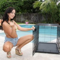 Brown-haired girlfriend Adriana Lily pegs her sissy over a dog box on poolside patio